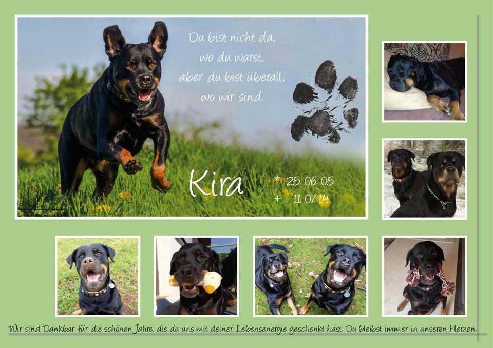 RIP Kira